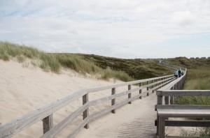 Holzbrücke Dünenlandschaft