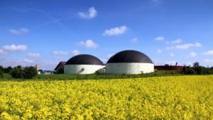 Biogasanlage und Rapsfeld